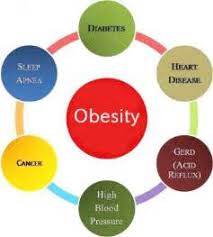 essays on childhood obesity original content past winning scholarship essays