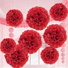 Diy Crepe Paper Flower Balls Valentine Red Tissue Paper Flower Pom Pom Balls 12 And 14 Inch Holiday Party Favor Flower Balls Hanging Decor Party Decoration 8 Pack Great Diy Kit