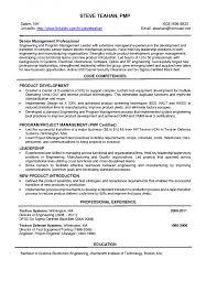 Resume Core Competencies Examples Coretency Examples In Resume Madrat Cotencies Template Finance For 69
