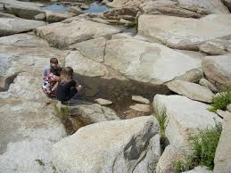 27 How To Explore Tidal Pools With Kids July 11 2016 Kids