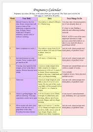 Pregnancy Callendar Pregnancy Calendar Template For Ms Word Printable Medical