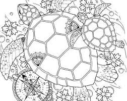 Small Picture Turtle coloring page Etsy