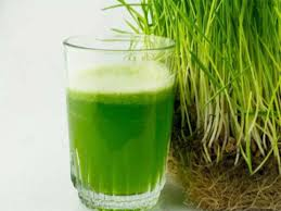 Wheatgrass Nutrition Chart What Is Wheatgrass Health Benefits Side Effects