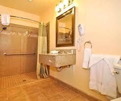 Ada Bathroom Design Ideas Cool Ideas