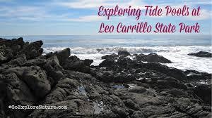 Exploring Tide Pools At Leo Carrillo State Park