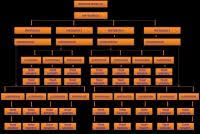 Organization Of Matter Flow Chart Company Structure