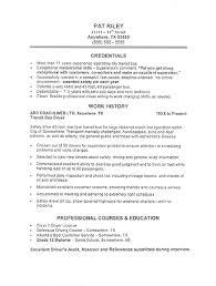 Resume Samples Hotel Driver Resume