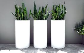 interior large tall plant pots outdoor and patio three white acceptable 7 tall