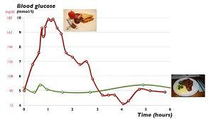 24 Hour Blood Sugar Chart Www Bedowntowndaytona Com