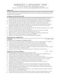 mckinsey resume sample mckinsey resume format mckinsey resume example mckinsey resume cover letter     Perfect Resume Example Resume And Cover Letter   ipnodns ru