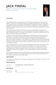 Vice President Human Resources Resume Proben Visualcv Lebenslauf