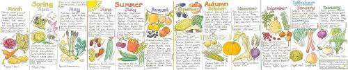 Seasonal Fruit And Veg Chart Uk Liz Cook Seasonal Uk Fruit And Vegetable Chart