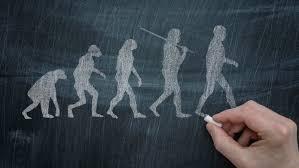 essay evolution versus creation  essay evolution versus creation