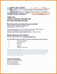 Military To Civilian Resume Templates With Government Resume Format