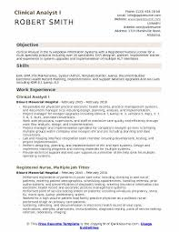Nursing Charting Systems Clinical Analyst Resume Samples Qwikresume