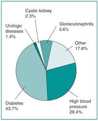 Diabetes Pie Chart A Pie Chart Listing The Causes Of Kidney Failure In The