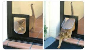 pet door cat door cat flap supply