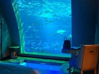 underwater hotel africa clear waterbed with fish tank bedroom aquarium price in india ideas room decorating m2 hotel