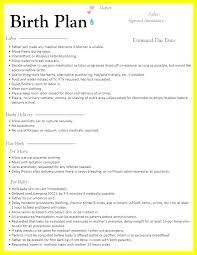 Natural Birth Plan Template Co Parenting Worksheets Unique Example Birth Plan Template For C