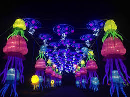 Dragon Lights Columbus Oh Dragon Lights Chinese Lantern Festival Motherhood Support