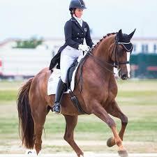 Penny Castle Equestrian   Facebook