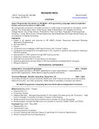 Professional Qualifications On Resume Summary 271 Peppapp