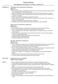 Quality Assurance Associate Sample Resume Quality Assurance Associate Resume Samples Velvet Jobs 3