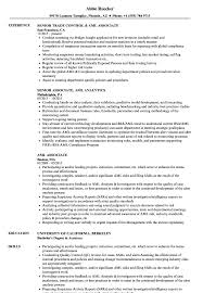 Aml Associate Resume Samples Velvet Jobs