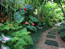 Small Picture Best 25 Small tropical gardens ideas on Pinterest Small balcony