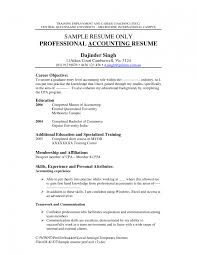 Object Resume Accounting Objectives Resume Examples In A For Internship Cool Ideas 23