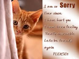 Quotes For Sorry To A Friend