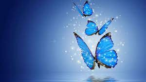 Cute Butterfly Girly Beautiful Wallpaper