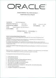 Database Testing Resumes Oracle Dba Resume Unique Oracle Dba Resume Oracle Resume Entry Level
