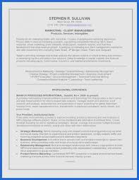 Create A Resume Template Awesome Resume Template Staggering Best Professional Resume Template