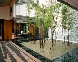 Bamboo garden in living room