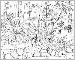 80 Amazing Photograph Of Adult Coloring Pages Nature Best Of
