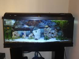 fish tank lighting ideas. Awesome Cichlid Tank Decorations For Fish African Cichlids. Office Ideas Home. Modern Boys Lighting E