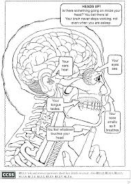 Human Coloring Page Anatomy Coloring Page Brain Pages Book The Human