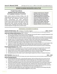 Monster Resume Samples Executive assistant Resume Samples Free or Executive Administrative 29