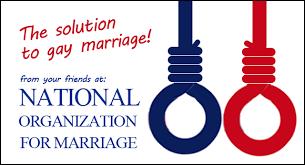 Afbeeldingsresultaat voor anti gay marriage