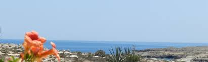 Rabbit Beach Lampedusa Vacation Rentals Houses More Homeaway