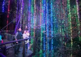 Botanical Gardens Nights Of Lights Botanical Gardens Light Show 2019 2020 New Car Reviews