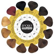 Aequo Color Chart Aequo Organic Hair Color