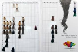 Makki Professional Hair Colour Chart Colouring Cream Shades Power Mix
