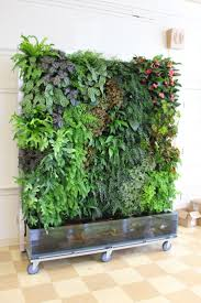 Small Picture Vertical Garden Design Ideas Affordable Cool Indoor Vertical