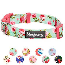 Blueberry Pet 20 Patterns Spring Scent Floral Collection Collars Martingale Collars Harnesses Or Leashes For Dogs Matching Lanyards For Pet