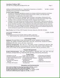 Program Manager Resume Examples Technical Program Manager Resume Sample Limited Edition