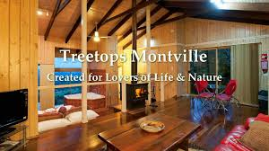Montville Accommodation Your Holiday Accommodation GuideTreehouse Montville