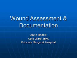 Wound Charting Examples Wound Assessment Documentation Ppt Video Online Download