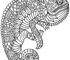 Animal Camouflage Colouring Pages Master Coloring Pages